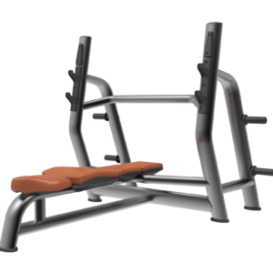 Land Fitness bench press